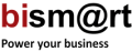 Bismart, Business Intelligence Specialist Services
